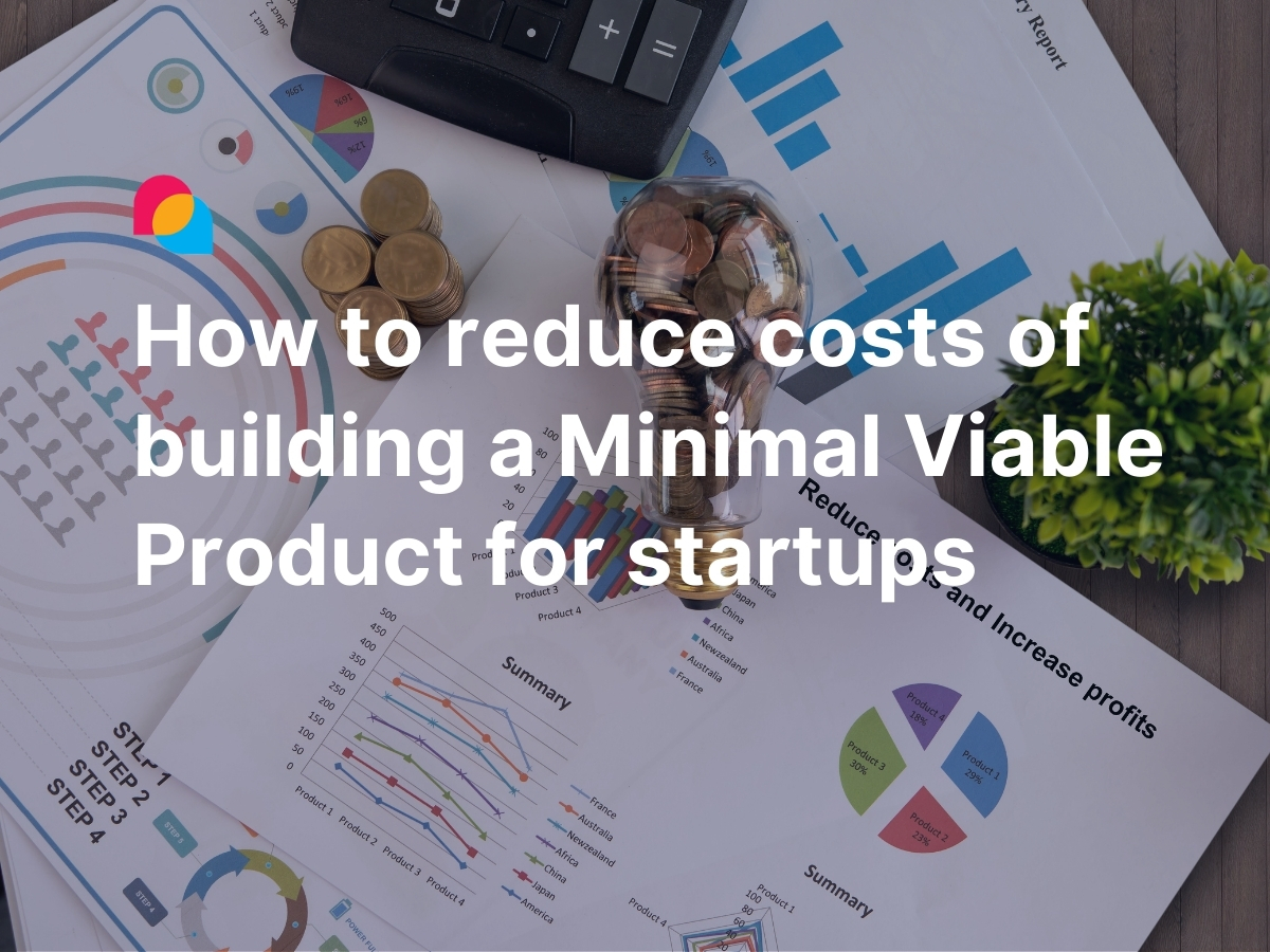 How to reduce costs of building an MVP for startups by Enlab Software